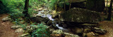 Stream Flowing in Forest, Lost Valley State Park, Ozark National Forest, Ozark Mountains, Arkansas Fotografie-Druck von  Panoramic Images
