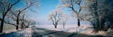 Road Passing Through Winter Fields, Illinois, USA Photographic Print by  Panoramic Images