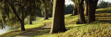 Trees in a Garden, Middleton Place, Charleston, Charleston County, South Carolina, USA Photographic Print by  Panoramic Images