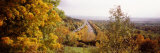 Trees with a Highway in the Background, Bundesautobahn 81, Baden-Wurttemberg, Germany Photographic Print by  Panoramic Images