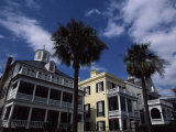Palm Trees in Front of Buildings, Charleston, Charleston County, South Carolina, USA Stampa fotografica