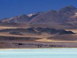 Aquamarine Waters of Laguna Tuyajto, Atacama, Chile Photographic Print by John Warburton-lee
