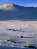 Bayan-Olgii Province, Yurts in Winter, Mongolia Photographic Print by Paul Harris
