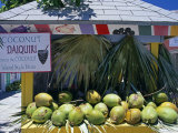Coconut Daiquiri Stall at Port Lucaya on Grand Bahama, the Bahamas Photographic Print by William Gray