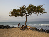 Acacia Tree on the Edge of the City of Sao Tomé, Where Young People Go to Bathe Photographic Print by Camilla Watson