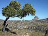 Landscape of Isalo NP, Fianarantsoa, Madagascar, Photographic Print