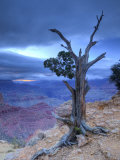 Arizona, Grand Canyon, from Moran Point, USA Photographic Print by Alan Copson
