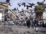 Feeding Pigeons in Front of Remains of Roman Western Temple Gate Outside Umayyad Mosque, Damascus Photographic Print by Julian Love