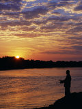 Zambezi National Park, Sausage Tree Camp, Fly-Fishing for Tiger Fish at Sunset on River, Zambia Photographic Print by John Warburton-lee
