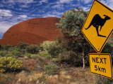 Alice Springs, Traffic Sign Beside Road Through Outback, Red Rocks of Olgas Behind, Australia Photographic Print by Amar Grover