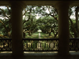 Oak Trees in Front of a Mansion, Oak Alley Plantation, Vacherie, Louisiana, USA Photographie