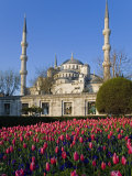 Blue Mosque, also known as the Sultanahmet Mosque, Gives its Name to the Surrounding Area Photographic Print by Julian Love