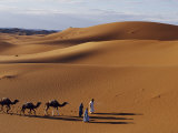 Berber Tribesmen Lead their Camels Through the Sand Dunes of the Erg Chegaga, in the Sahara Region  Photographic Print by Mark Hannaford