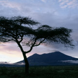 Dawn Breaks over Mount Meru, Tanzania Photographic Print by Nigel Pavitt