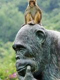 Hainan Province, Hainan Island, Monkey Island Research Park - a Gorilla Statue, China Photographic Print by Christian Kober