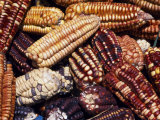 Maize from Pisac Market, Sacred Valley, Peru Photographic Print by John Warburton-lee