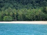 Champagne Beach, Espiritu Santo, Vanuatu Photographic Print by Neil Farrin