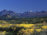 Fall Colours over Denali National Park, Alaska, USA Photographic Print by John Warburton-lee