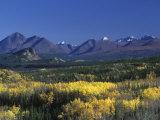 Fall Colours over Denali National Park, Alaska, USA Photographic Print by John Warburton-lee