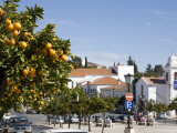 Alentejo, Vila Vicosa, it Is Spring in Small Town of Vila Vicosa in Alentejo Region of Portugal Photographic Print by Camilla Watson