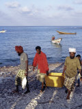 Fishermen Bring in their Catch at Sekra, a Fishing Village on Socotra's North Coast Photographic Print by Nigel Pavitt