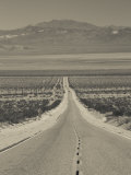California, Mojave Desert, Amboy Road, USA Photographic Print by Walter Bibikow