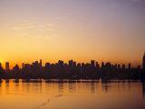 Manhattan Skyline, New York City, USA Photographic Print by Danielle Gali