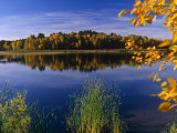 Minnesota, Lake Winnibigoshish, Chippewa National Forest, Northern Minnesota, USA Photographie par Paul Harris