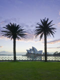 New South Wales, Sydney, Sydney Opera House Through Palms, Australia Photographic Print by Walter Bibikow