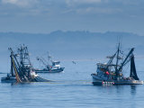 California, Monterey, Fishing Boats, USA Photographic Print by Alan Copson