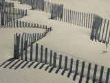 New York, Long Island, the Hamptons, Westhampton Beach, Beach Erosion Fence, USA Fotografisk tryk af Walter Bibikow