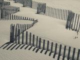 Walter Bibikow - New York, Long Island, the Hamptons, Westhampton Beach, Beach Erosion Fence, USA Fotografická reprodukce