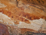 Northern Territory, Ancient Aboriginal Art of the Aranda People at Wallace Rockhole, Australia Photographic Print by Nigel Pavitt