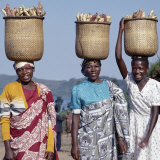 Group of Cheerful Women Carry Sweet Potatoes to Market in Traditional Split-Bamboo Baskets Fotografie-Druck von Nigel Pavitt