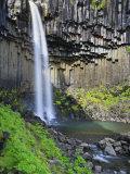 Svartifoss Waterfall, Skaftafell Park, Iceland Photographic Print by Michele Falzone