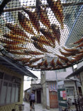 Fish are Laid Out to Dry Above Streets of Tai O - Fishing Village on Lantau Island, Hong Kong Photographic Print by Andrew Watson