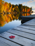 Alan Copson - Maine, Baxter State Park, Lake Millinocket, USA - Fotografik Baskı