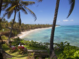 Corn Islands, Little Corn Island, Coral and Iguana Beach, Nicaragua Photographic Print by Jane Sweeney