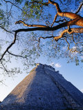 Magician's Pyramid, Uxmal, Yucatan State, Mexico Fotografisk tryk af Paul Harris