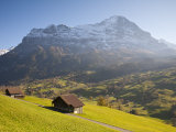 Alpine Meadow, Eiger and Grindelwald, Berner Oberland, Switzerland Photographic Print by Doug Pearson