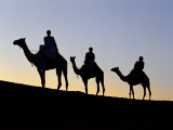 Three Camel Riders Silhouetted Against an Evening Sky Photographic Print by Nigel Pavitt