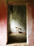 Chair in a Deserted Farm Near San Quirico D'Orcia, Valle De Orcia, Tuscany, Italy Photographic Print by Nadia Isakova