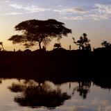 Southwest Ethiopia, Omo River, Sunset on Banks of Omo River Near a Dassanech Village, Ethiopia Fotografisk tryk af Nigel Pavitt