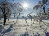 Austria Austrian Tyrol Zillertal Valley Mayrhofen Ski Resort Hippach Village Snow Cover Photographic Print by Christian Kober