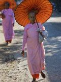 Buddhist Nuns with Bamboo-Framed Orange Umbrellas Walk Through Streets of Sittwe, Burma, Myanmar Photographic Print by Nigel Pavitt