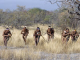 Bushman Hunter-Gatherers Makes Stealthy Approach Towards an Antelope, Bows and Arrows at Ready Photographie par Nigel Pavitt