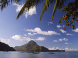 Palawan Province, El Nido, Bacuit Bay, Cadlao Island and Palm Trees, Philippines Photographic Print by Christian Kober