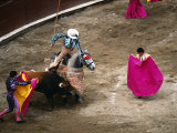 Crowds at a Stadium for a Bullfight, Quito, Ecuador Photographie par Paul Harris