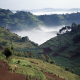 Mist Hugs the Bottom of Valley in Early Morning in Beautiful Hill-Country of Southwest Uganda Fotografisk tryk af Nigel Pavitt