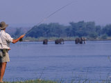 Lower Zambezi National Park, Fly-Fishing for Tiger Fish on the Zambezi River Against a Backdrop of  Photographic Print by John Warburton-lee